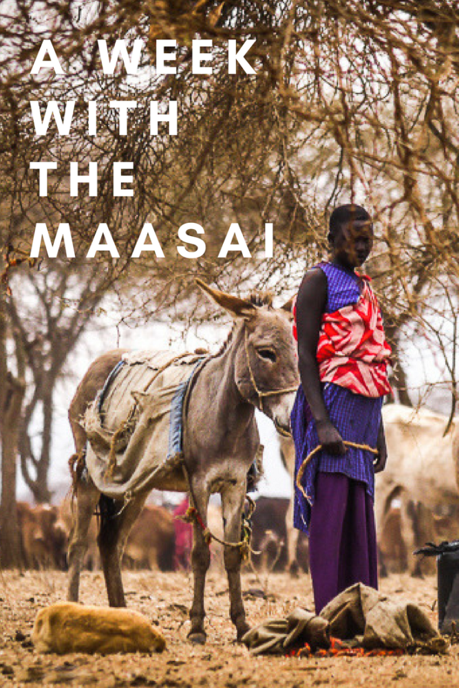 A WEEK WITH THE MAASAI (3)