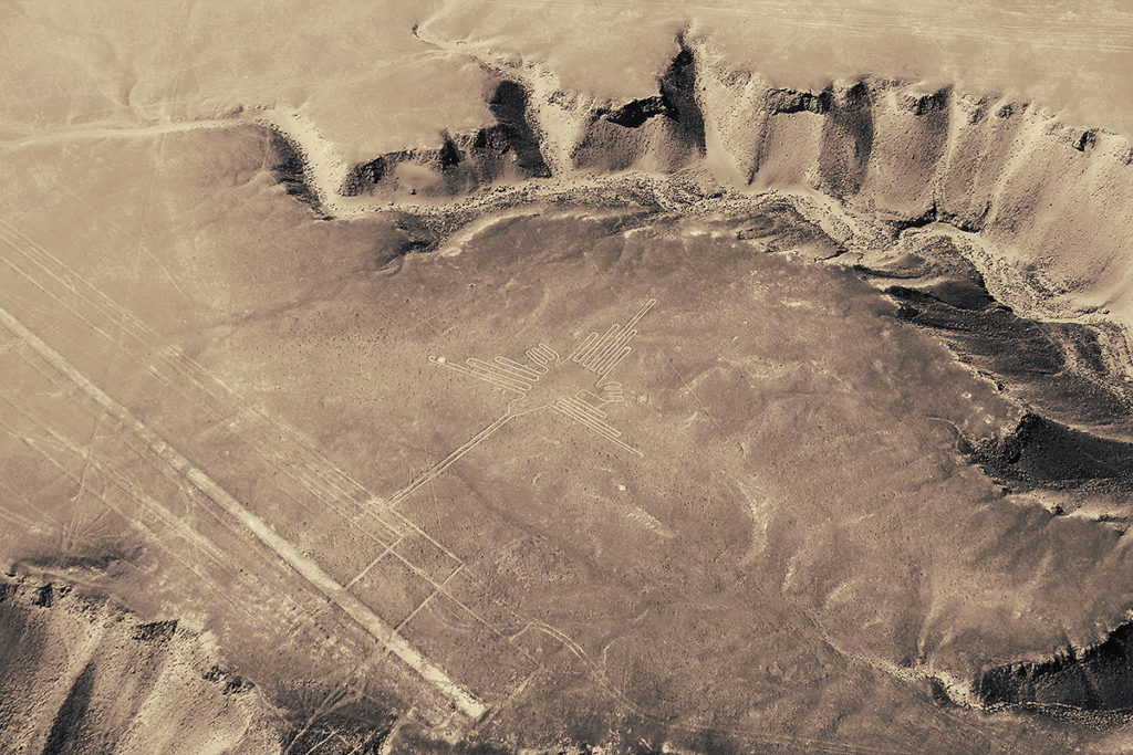 A bird traced over the desert in Nazca, one of the many cool things to do in Nazca!