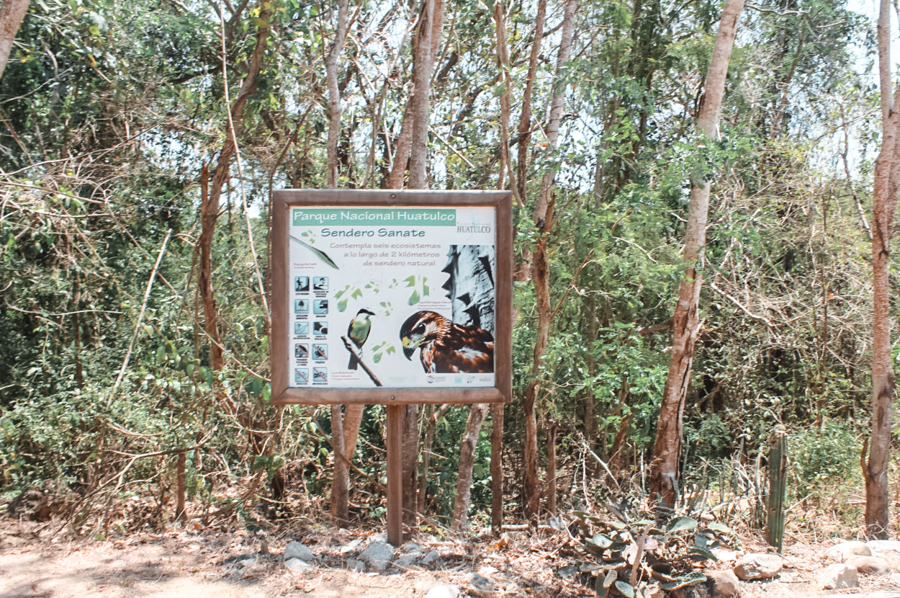 How to get to Cacaluta Bay in Huatulco. This post marks the entrance to the jungle, where you'll have to walk for thirty minutes before getting to the best beach in Huatulco.