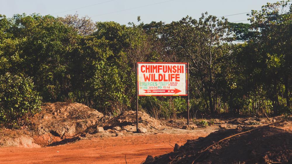 Chimfunshi Wildlife Sanctuary sing