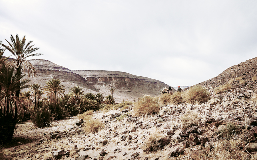 Looking to get off the beaten path in Morocco? Oasis Du Fint is one of the most incredible rural destinations in Morocco