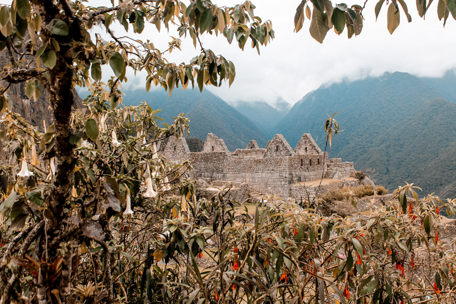 Incan Structure in Machu Picchu. Dying to visit but not sure if you can afford it? Read my guide to find out how to visit Machu Picchu on a budget