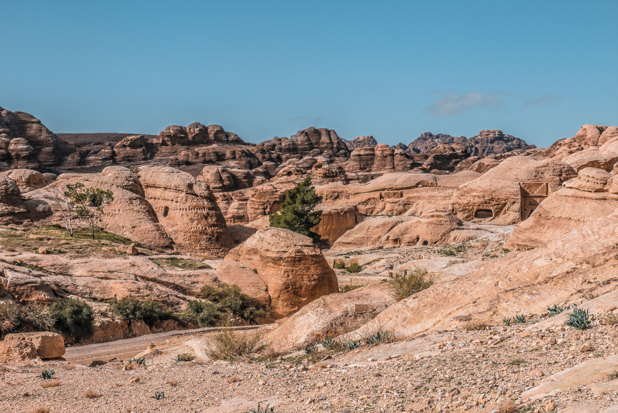 Petra in a day: Glorious desertscapes