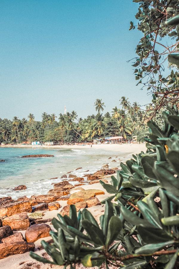 Reasons To Visit Sri Lanka-1-16