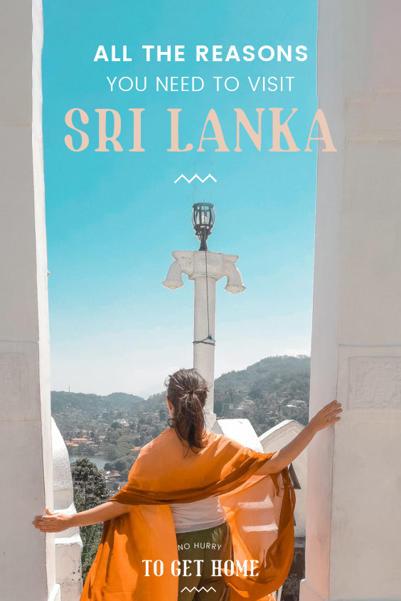 Wondering where to travel next? If you love epic hikes, paradise beaches, and ancient culture, you need to visit Sri Lanka and here are all the reasons you'll fall in love with this island nation in South Asia!