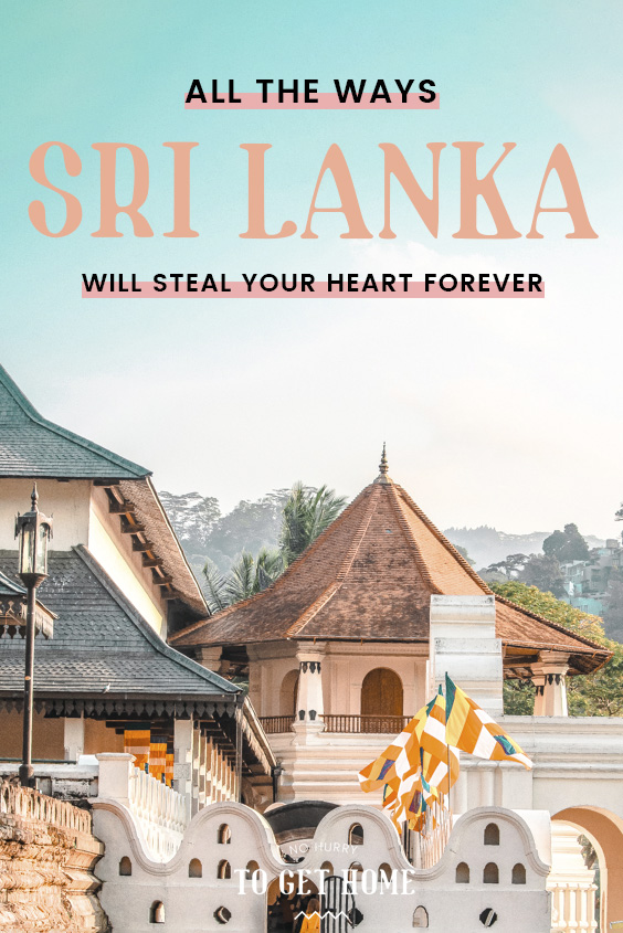 Looking for destination inspiration? Whether you're planning a trip with your girlfriends, looking for a romantic holiday with your partner, or going on a solo backpacking trip, Sri Lanka is the perfect destination for every type of traveler! From beaches to ancient history and endless rolling hills, here are all the reasons you'll fall in love with Sri Lanka.