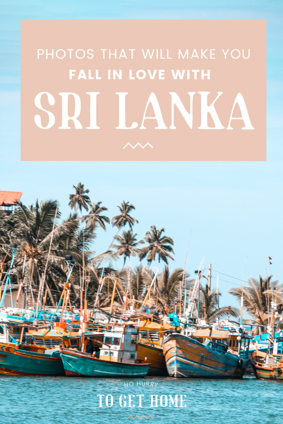 Beaches, wildlife, mountains, and amazing hiking activities are just a few of the things Sri Lanka has to offer. If you're dreaming of your next destination, make sure to check out this post on Sri Lanka photography to get you inspired to visit this gem in South Asia! #SriLanka
