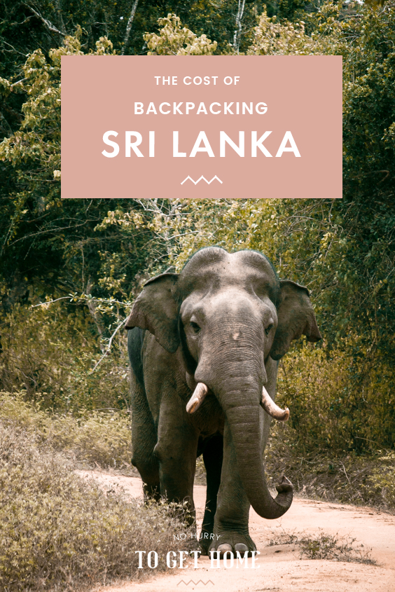 Backpacking Sri Lanka soon? I bet you're wondering how much it will cost to travel Sri Lanka, so I've rounded up my exact expenses of my travels in Sri Lanka, where I share how much I budgeted daily on everything, including accommodation, activities, safaris, and more!
