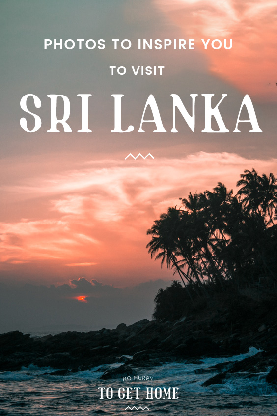 Perfect sunsets, incredible beaches, and the best wildlife Asia has to offer can all be found in Sri Lanka, a tiny island nation in South Asia that you need to travel to! Here are a few photographs to inspire you to visit Sri Lanka next!