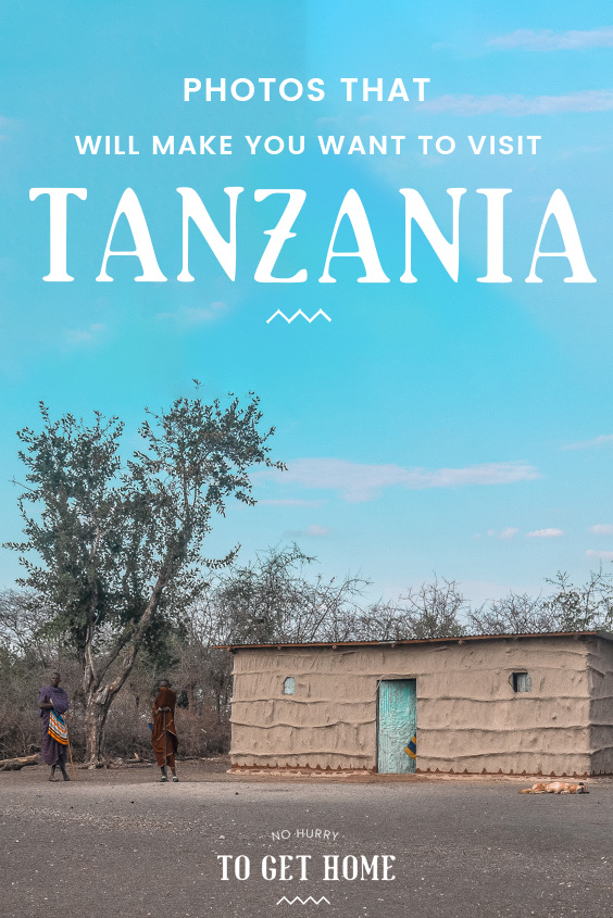 Are you considering traveling to Africa for your next holiday but not sure what country to pick? If you love culture, safaris, wildlife, and great food, you need to visit Tanzania!