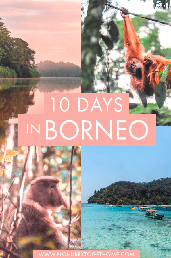 Looking for the best things to do and the most amazing destinations in Borneo? If you love exploring national parks, spotting wildlife, and relaxing at white-sand beaches, this introductory itinerary to Borneo will show you the best places to visit for first-timers in Borneo!