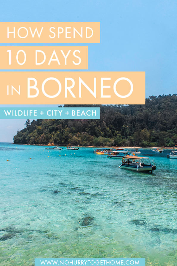 I'll be honest here: 10 days is barely enough to scrape the surface of all the attractions in Borneo, but I've narrowed down the best things to do in Borneo into this packed itinerary that will show you the highlights of the Malaysian side of the island, including Sarawak's wildlife, Kota Kinabalu's beaches, and a whole lot of amazing wildlife encounters! #Borneo #Malaysia