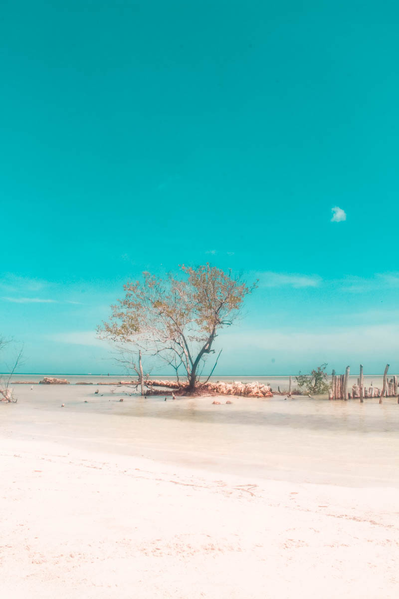 A walk to Punta Mosquito is one of the best things to do in Holbox