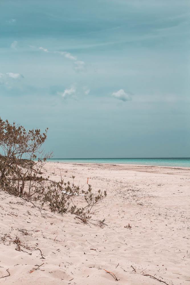 The beaches at Las Coloradas are amazing!