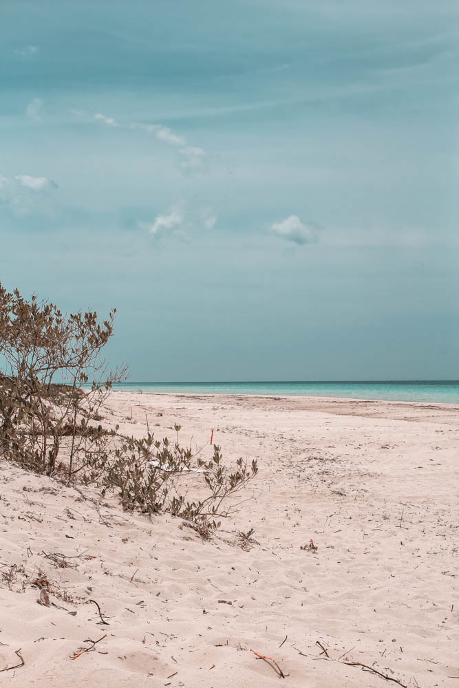 The beaches at Las Coloradas are amazing!