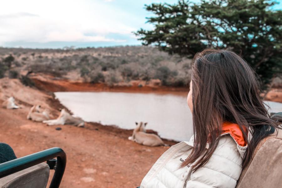 Thanda Safari Review-5758