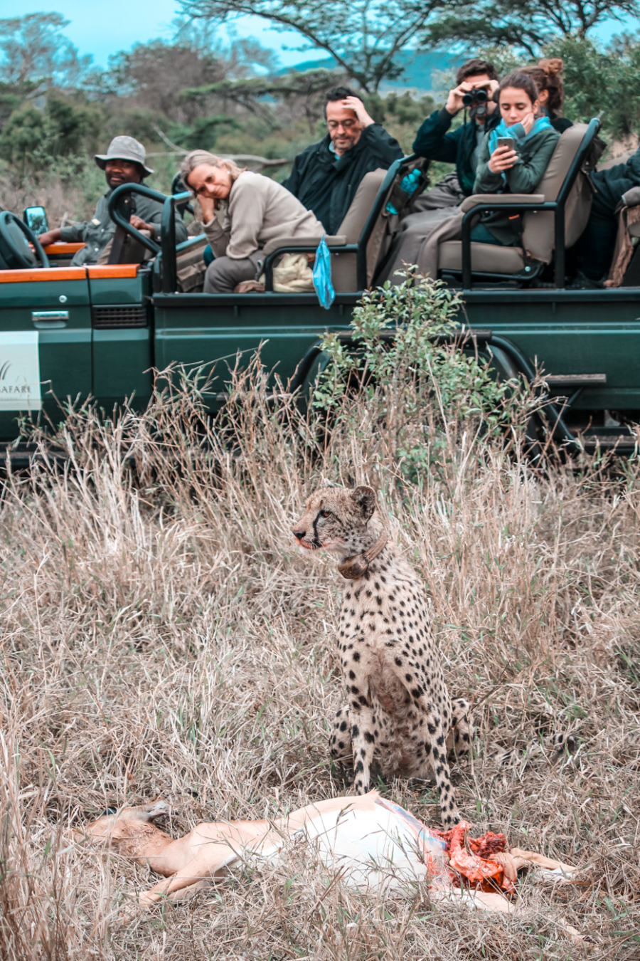 Thanda Safari Review-6308