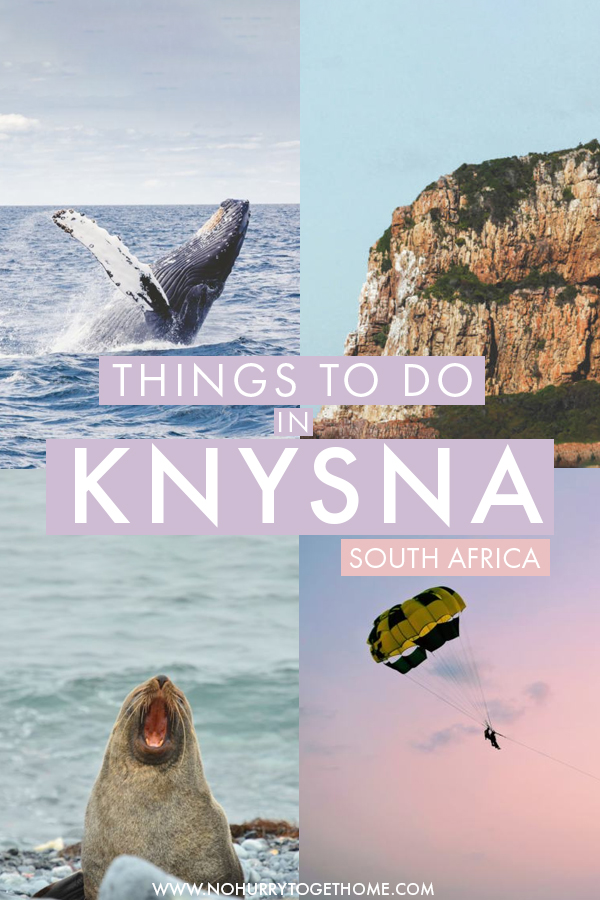 Thinking of visiting Knysna, South Africa and wondering what there is to do? On this travel guide to Knysna, I share the best activities, wildlife spottings, adventure activities and hikes to do in Knysna. Aside from that, I also share my top travel tips to visit Knysna and the Garden Route, as well as the best place to stay in Knysna! #Knysna #GardenRoute #SouthAfrica
