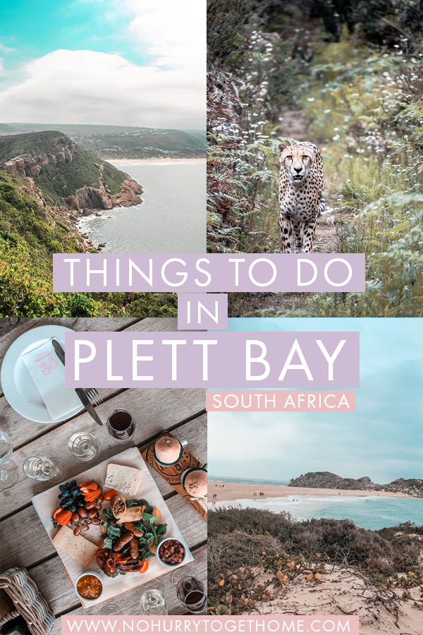 Visiting Plettenberg Bay in South Africa's Garden Route and wondering what to do? Plett Bay is home to an incredible array of activities for every type of traveler, so I've rounded up the best things to do in Plettenberg Bay that you can easily fit into a weekend. From wine tasting to cheetah spotting and hikes in Robberg, here are the absolute cant miss activities in Plettenberg Bay! #SouthAfrica