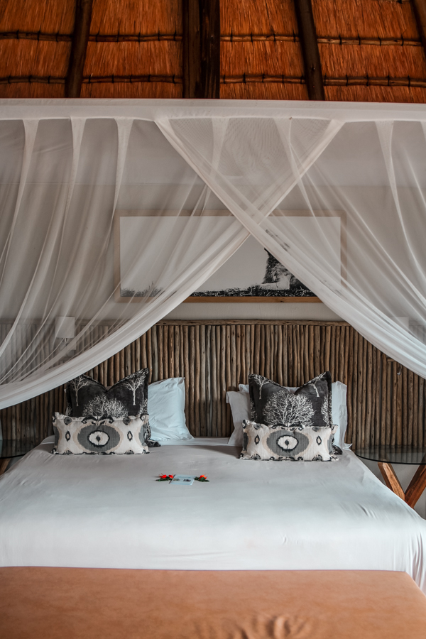 Game Reserves in KZN South Africa - Rhino River Lodge Review - Game Drives-85