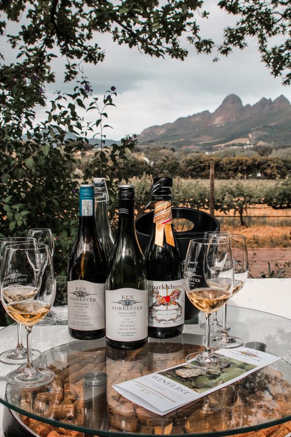 Wine Farms in Stellenbosch - Ken Forrester-2