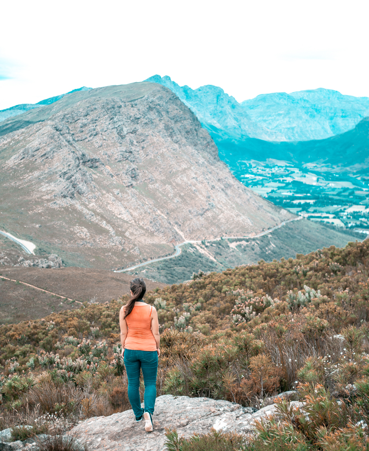 Mont Rochelle Nature Reserve, an easy day trip in Franschhoek