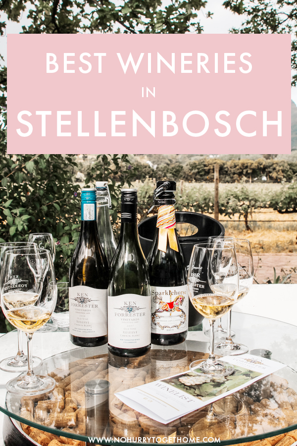 Planning your Stellenbosch itinerary? Checking out the wine farms and vineyards is one of the top things to do in Stellenbosch, so I decided to put together a guide to the best wineries in Stellenbosch that absolutely need to be in your itinerary if you want to try the best wine South Africa has to offer. #Stellenbosch