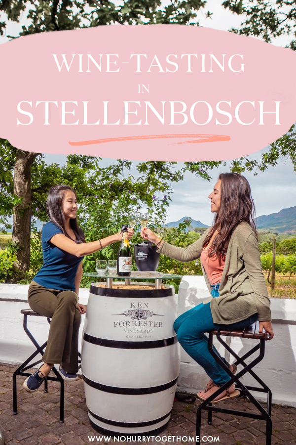 Wondering how to go wine tasting in Stellenbosch? Checking out vineyards is a must on any Garden Route and South Africa itinerary, so I decided to put together the ultimate guide to the top wine estates and farms in Stellenbosch! #Stellenbosch