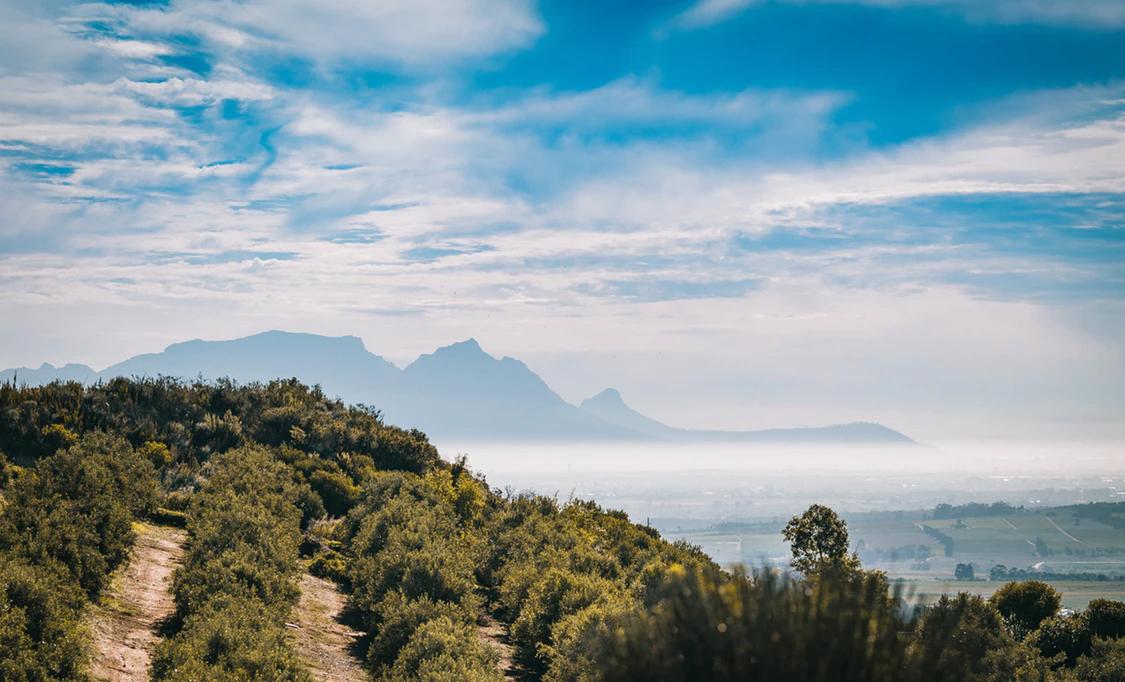 Hidden Valley Wine Estate, a Stellenbosch wine farm with a view