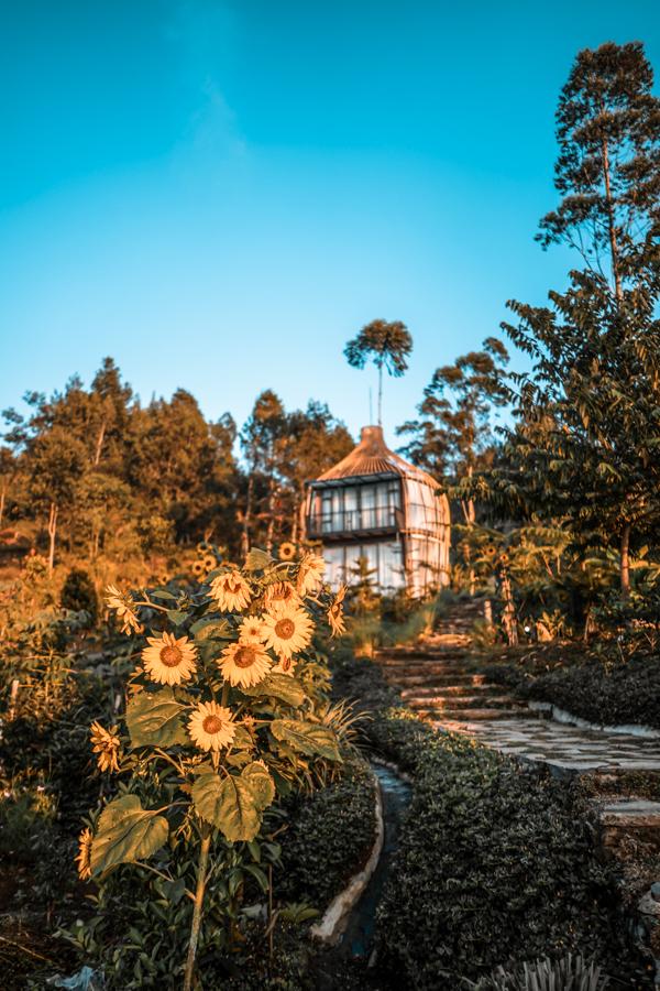 Bubu Jungle Resort in Bandung