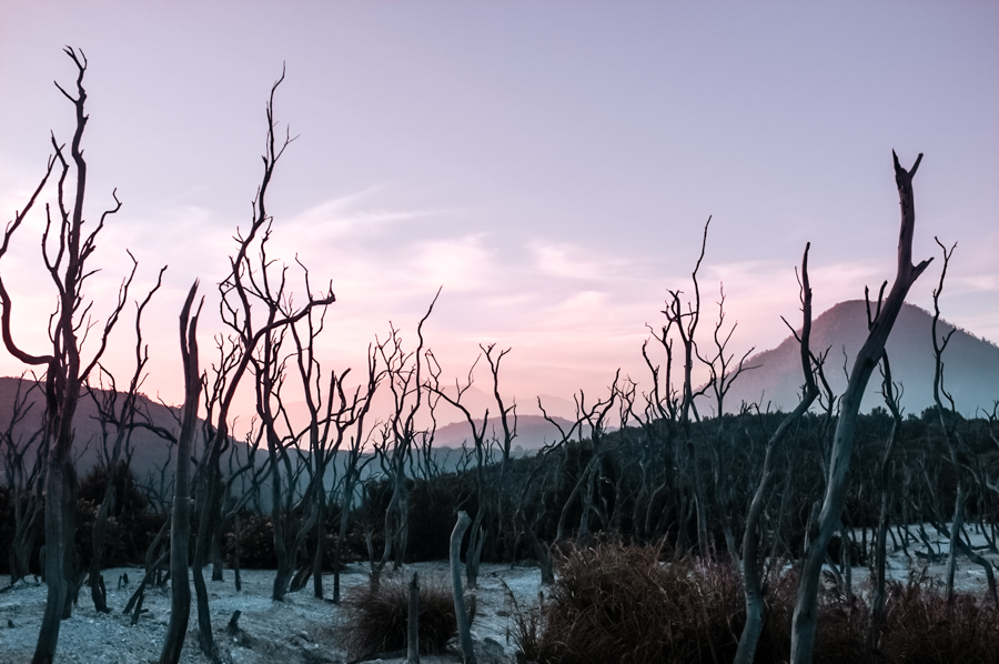 Hiking Mount Papandayan is one of the most exciting things to do near Bandung!