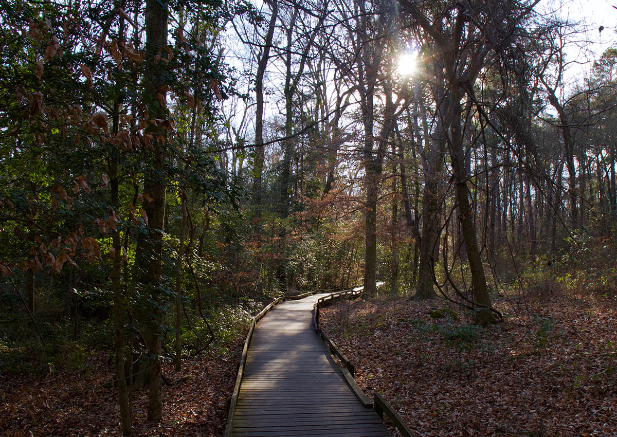 South Carolina National Park